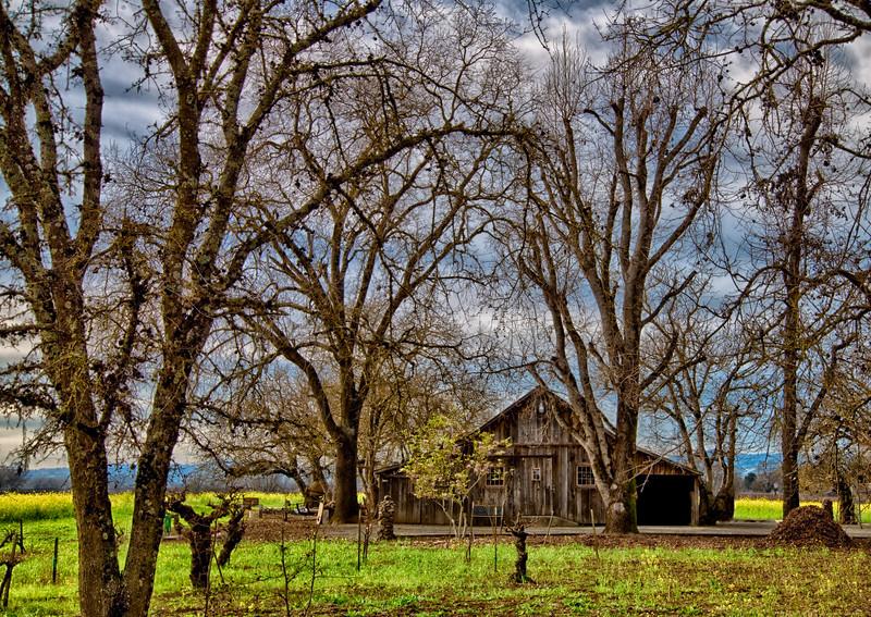 _DSC5763 Barn in the Trees 2