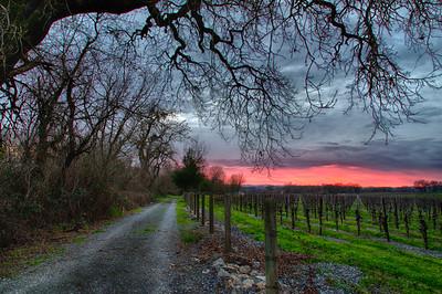 _DSC5716 Windsor Road Sunset
