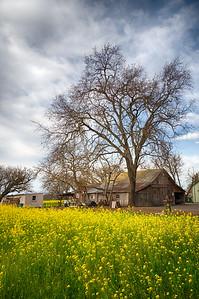 _DSC5752 Westside Barn