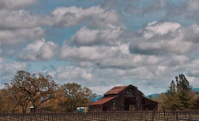 _DSC1112 Sonoma Sky