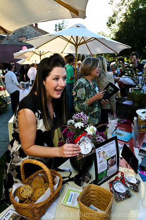 Sonoma Valley Visitors Bureau / Chamber 5-6-2010