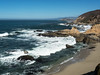 Bodega Bay Coast 1