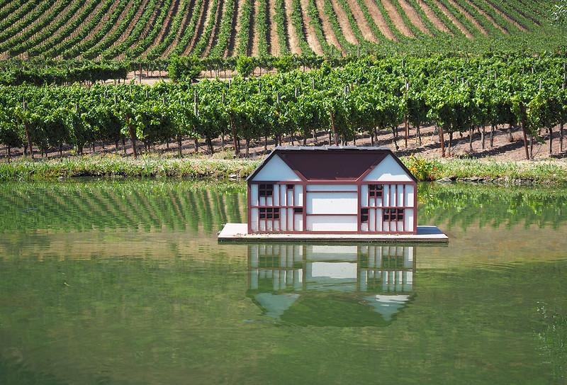 Pond at Schug Winery - Sonoma California