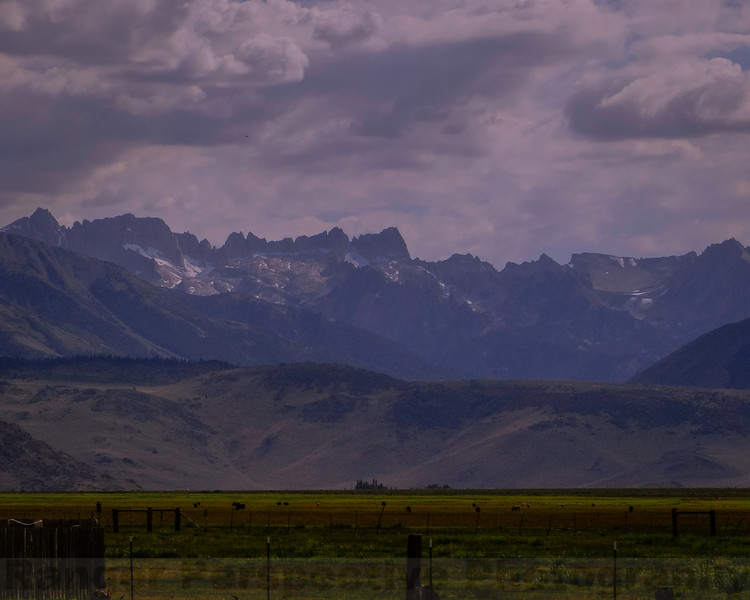 The Sierra from Bridgeport