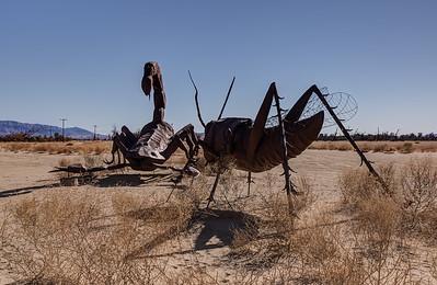 HN-6 02 Scorpion and Grasshopper