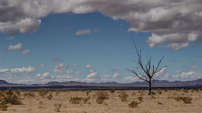 003 Ranegras Plain, Route 72, Bouse, Arizona