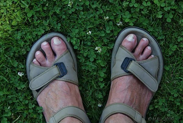 """10-09-2009<br /> <br /> """"Un trébol de cuatro hojas"""" - Lo vi, fui a por la cámara y, al intentar 'enmarcarlo' con los pies para que se pudiese localizar mejor en la foto, fui tan estúpido que lo pisé y... ¡ESTA JUSTO DEBAJO DE MI PIE IZQUIERDO! ;-)<br /> <br /> """"A four leaf clover"""" - I saw it, went to get the camera and, when trying to 'frame' it with my feet so it could be easily located in the picture, I was so stupid that I stepped on it and... IT IS RIGHT UNDER MY LEFT FOOT! ;-)"""