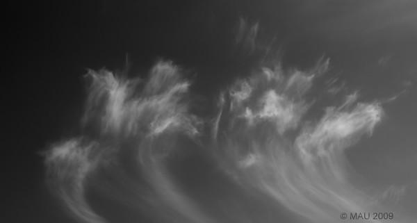 """""""Simplemente nubes"""" - Sentarme en el jardín y observarlas es uno de mis pasatiempos favoritos. Cuando las hay, por supuesto. Alguna vez hago alguna foto. (Mejor a tamaño grande).<br /> <br /> """"Just clouds"""" - Sitting in the garden and watching them is one of my favourite hobbies. When there are any, of course. Some times I take a shot. (Better at larger sizes)."""
