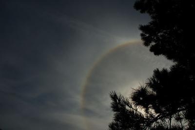 """25-10-2009  """"Halo de 22º"""" - Es un círculo que, en ciertas circunstancias, se puede ver alrededor del sol o de la luna. Hecha esta mañana desde mi jardín.  """"22º halo"""" - It is a circle that, under certain circumstances, can be seen around the Sun or the Moon. Taken this morning from my yard."""