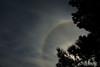 """25-10-2009  """"Halo de 22º"""" - Es un círculo que, <a href=""""http://www.astromia.com/glosario/halosolar.htm"""">en ciertas circunstancias</a>, se puede ver alrededor del sol o de la luna. Hecha esta mañana desde mi jardín.  """"22º halo"""" - It is a circle that, <a href=""""http://en.wikipedia.org/wiki/22%C2%B0_halo"""">under certain circumstances</a>, can be seen around the Sun or the Moon. Taken this morning from my yard."""