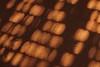 """02-9-2010<br /> <br /> """"Suelo emboquetado"""" - A falta de algo mejor para hoy, seguiré con la broma de jugar con los títulos para que Ramón y los demás se rían un poco. Es el 'bokeh' natural que se forma en la moqueta del salón al colarse el sol por las rendijas de la persiana de una de las ventanas.<br /> <br /> """"Bokehed floor"""" - As I have nothing better for today, I will continue teasing Ramon and other friends by playing with the spelling and pronunciation of the title in Spanish. 'EnMoquetado' would mean 'carpeted', but by changing the 'M' with a 'B' I get 'enBOQUEtado', where 'boque' is how 'bokeh' is pronounced.. Anyway, this 'natural bokeh' is formed on the carpet of my living room when the sun squeezes thru the window blinds."""