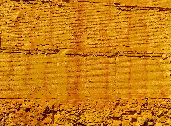 "06-04-2010<br /> <br /> ""Amarillo"" - ""Yellow"""