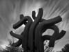 "23-2-2011<br /> <br /> ""Me dicen que es una escultura""<br /> <br /> ""They tell me it is a sculpture"""