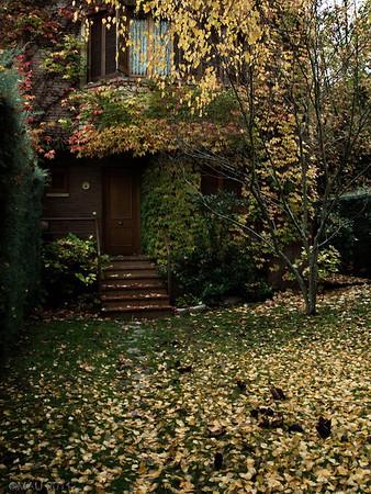"""21-12-2011<br /> <br /> """"El otoño nos deja"""" - Sí, nos deja hoy y esta es casi la única foto de otoño que he hecho este otoño, y una de las pocas fotos que he hecho estos últimos meses. Estoy echado a perder :-(<br /> (Siempre mejor ver a tamaño grande)<br /> ¡¡ FELIZ NAVIDAD !!<br /> <br /> """"Autumn is leaving us"""" - Yes, today, and this is about the only Autumn shot I have taken this Autumn, and one of the few photos I have taken these past few months. I'm totally spoiled :-(<br /> (Always better seen at a large size)<br /> MERRY CHRISTMAS !!"""