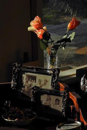"""27-2-2011<br /> <br /> """"Fotos y rosas""""<br /> <br /> """"Photos and roses"""""""