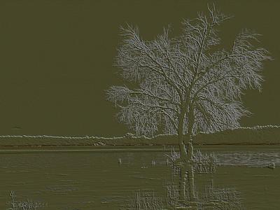 "14-6-2011  ""Embalse de Valmayor"" (Mejor vista a tamaño grande)  ""Valmayor Reservoir"" (Best viewed in large size)"