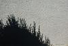 """25-9-2010<br /> <br /> """"Sub-exposición en pared""""<br /> <br /> """"Underexposure on wall"""""""