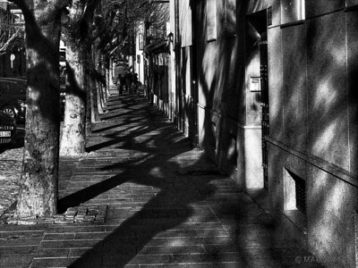 "23-5-2011  ""Paseando sobre las sombras""  ""Walking on the shadows"""