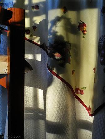 """07-10-2011<br /> <br /> """"Luz de atardecer""""<br /> <br /> """"Light at sunset"""""""