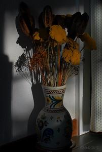 """28-Ago-2012  """"Las flores secas"""" - """"The dry flowers"""""""