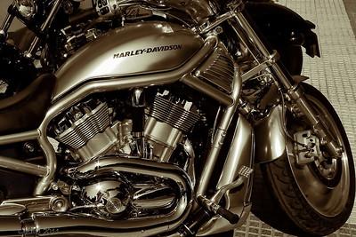 """06-10-2011  """"Harley"""""""