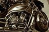 """06-10-2011<br /> <br /> """"Harley"""""""