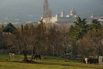 """12-3-2011  """"Viviendo como reyes... junto a palacio""""  """"Living like kings... next to the palace"""""""