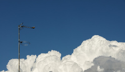 """25-4-2010  """"¿Podré llegar hasta esa nube?"""" - """"Will I be able to reach that cloud?"""""""