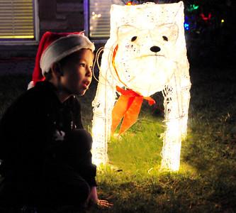 Holiday Lights - Olympic Manor 12-16-15