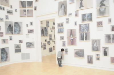 1-23-15 Henry Art Gallery