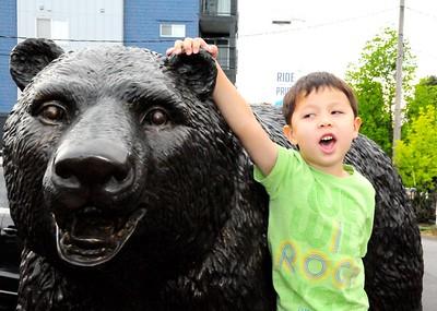 Brown Bear car washes 5/1/15