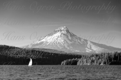 Sailboat with Mount Hood