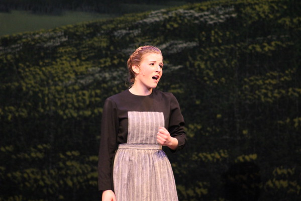Sound of Music 2013 the Mountainside