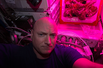Tomorrow we'll eat the anticipated veggie harvest on @space_station! But first, lettuce take a #selfie. #YearInSpace