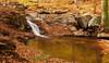 A cascade in Cascade Run<br /> Patapsco Valley State Park, Elkridge, MD