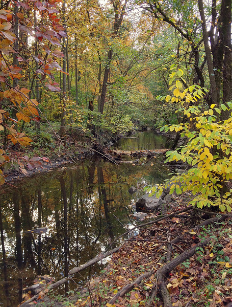 "Sligo Creek in autumn <I><span class=""nonNative"">(iPhone photo)</span></I> Silver Spring, MD"
