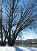 Winter scene at White's Ferry on the Potomac River<br /> Montgomery County, MD