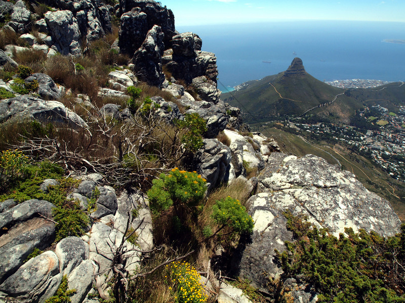 View to Signal Hill from Table Mountain