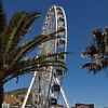 Ferris Wheel, Capetown Waterfront