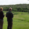 Sheri and Brian contemplate the local warthog.