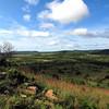 Phinda Reserve