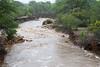 Orpen to Satara and Nwanetsi