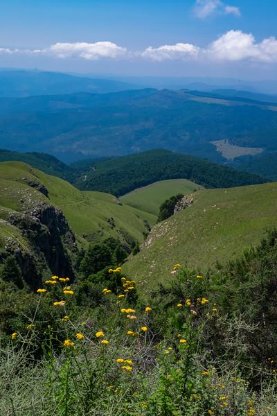 Toward Kruger