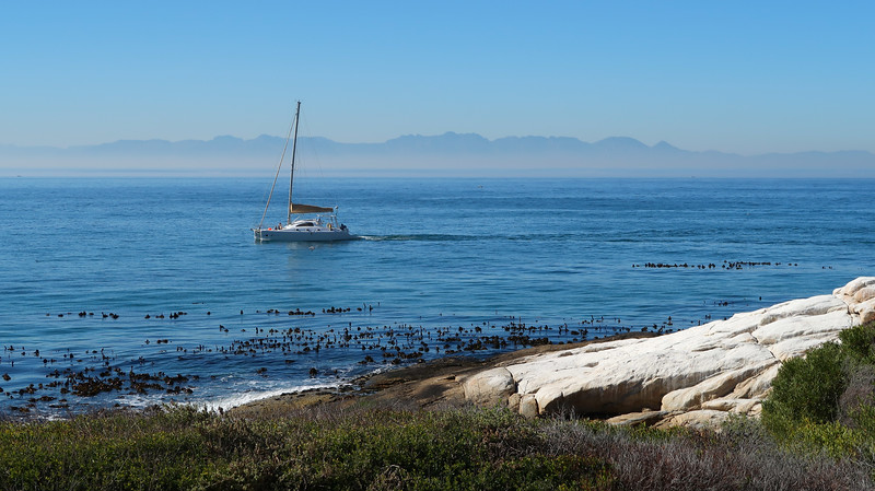 A boat out on the water off the shores of Boulders Beach