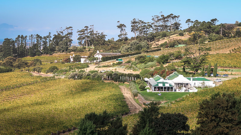 You can go wine tasting in Cape Town in Constantia.