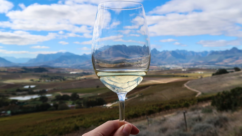 Sipping on wine and enjoy our wine safari tour in Stellenbosch.