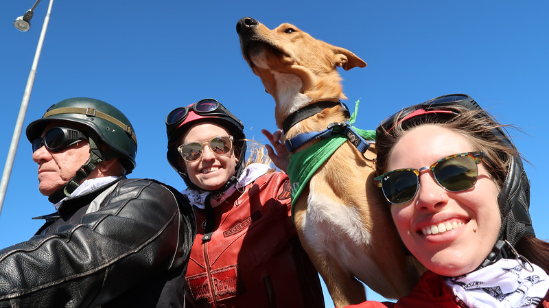 Riding with Cape Sidecar Adventures and their resident dog!