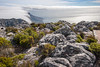 Table Mountain 2010Chohany House-{Sequence # (1)-Dec 01, 2017-8