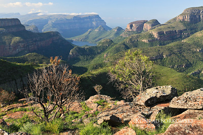 south_africa-26