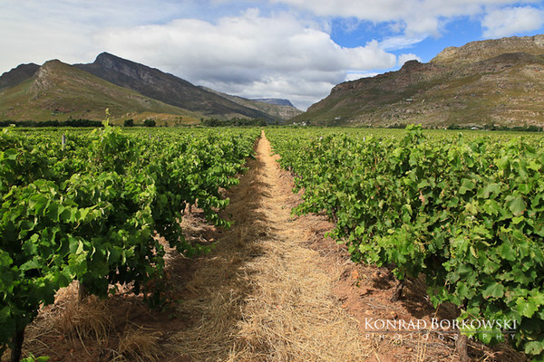 south_africa-23